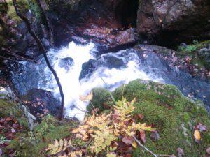 Canyon le Seebach